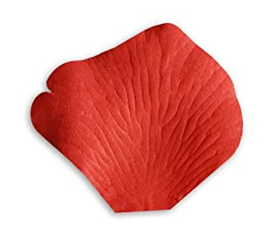 Amazon.com: 1000 Wedding Silk Rose Petals Ruby Red by
