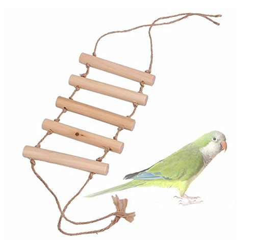 Party Favors - Arrival Bird Parrotclimbing Ladder Toy Parrot Swing Toys - Girl Game Teen Space Dark Cockatoo Jump Pens Containers Narwhal Movie Under Perch Naughty Dolphin Stamps Easter Bubbles ()