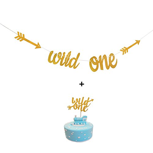 Gold Glitter Wild One Banner Sign with Wild One Cake Topper for Baby Shower 1st Birthday Party Decorations