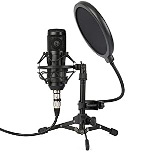 ZINGYOU ZY-801 Professional Studio Microphone, Desktop Computer Cardioid Condenser Mic with Tripod for PC Recording, Broadcasting (Black)