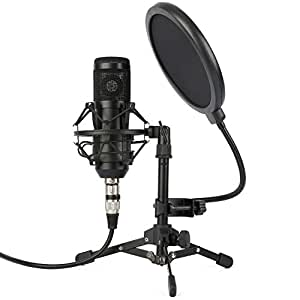 Amazon Com Zingyou Zy 801 Professional Studio Microphone