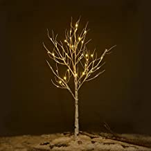 Prelit Birch Tree 48 LEDs Light Silver Twig Warm White White Branches (4 Feet) Home Festival Party Christmas Indoor and Outdoor Use