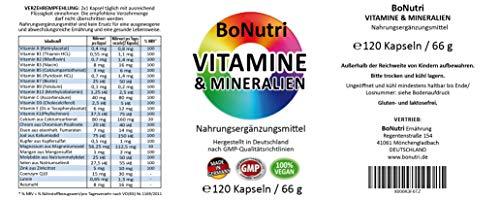 23 Vitamine & Mineralien Mineralstoffe 120 vegane Kapseln 2-Monatsbedarf Ohne Magnesiumstearat Vegan Glutenfrei Laktosefrei Beste Qualität