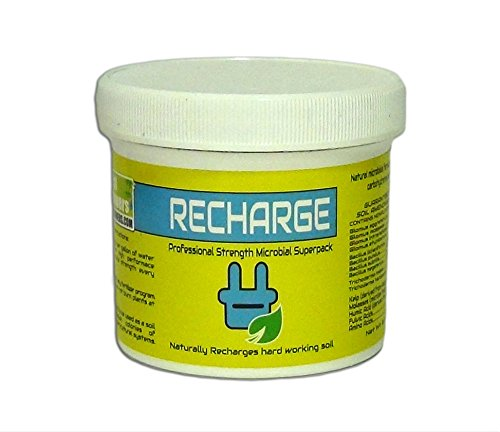 real-growers-recharge-8oz