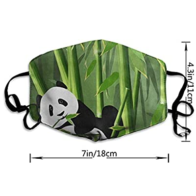 Face Mask Panda Animal Bamboo Tree Cool Cycling Half Face Earloop Ski Mask For Women