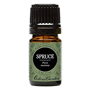 Edens Garden Spruce 5 ml 100% Pure Undiluted Therapeutic Grade GC/MS Certified Essential Oil