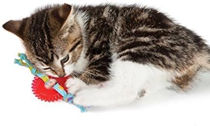 Petstages Dental Kitty Chew Wheel 5