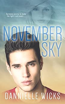 November Sky (Hardest Mistakes Book 2) by [Wicks, Dannielle]