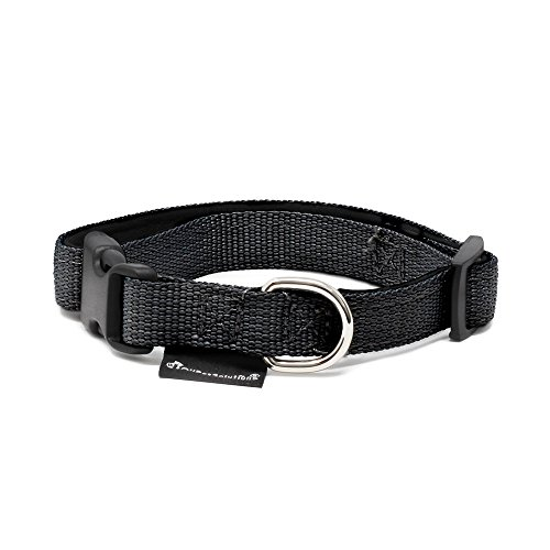 All Pet Solutions Dog Puppy Soft Padded Durable Strong Adjustable Collar, Small, Black