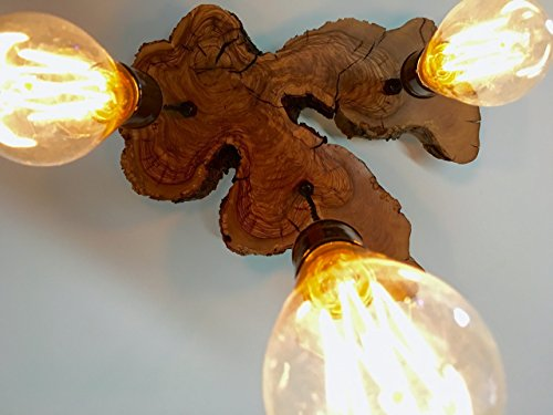 Modern Live-Edge Olive Wood Light Fixture with 3 Vintage Edison Lights by 7M Woodworking