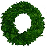 Mills Floral Company Boxwood Wreath Single Side 10""