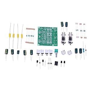 Amazon.com: LiChiLan - Kit de tablero preamplificador AC 12 ...
