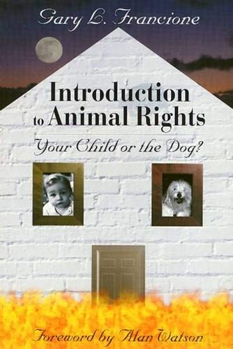 Introduction To Animal Rights  Your Child Or The Dog