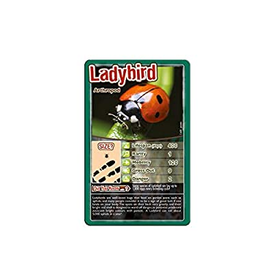 Bugs Top Trumps Card Game: Toys & Games