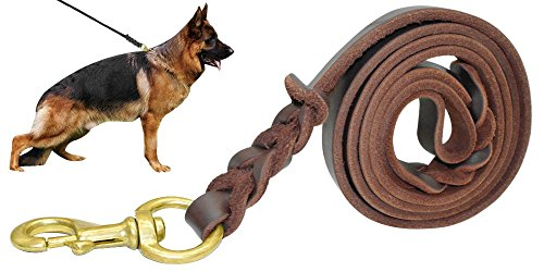 Beirui Leather Dog Leash - Training & Walking Braided Dog Leash - 4 ft by 1/2 In (120cm 1.2cm) - Latigo Leather (Latigo Leather Twist)
