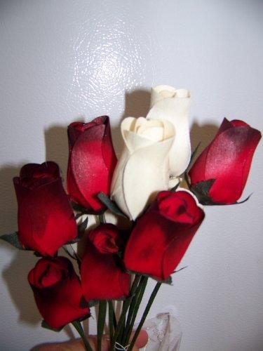 - Forever Wooden Roses 1 Dozen Red/black Tip and White