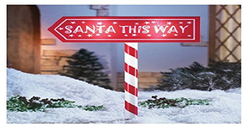 Candy Cane Solar Light Stakes in Florida - 6