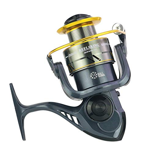 FELICIF Spinning Fishing Reel 12+1 Bearings Left Right Interchangeable Handle for Saltwater Freshwater Fishing with Double Drag Brake System (Size : MD5000)