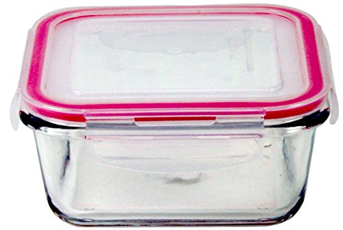 Circleware 7219 Borosilicate Square Glass Meal Prep Containers with with Snap Airtight Locking Plastic Lids, Kitchen Leak Proof Food Storage, Microwave, Oven and Freezer Safe, Red Lining, 23 oz, Clear
