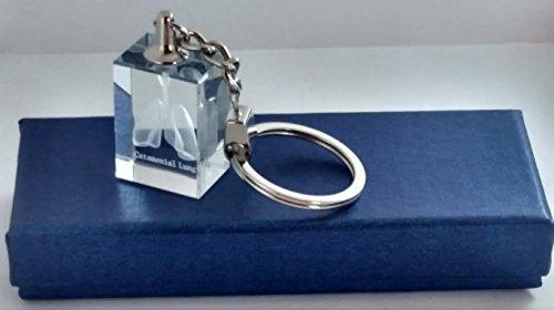 Elegant Crystal 3d Laser Catamenial Lung Model Keychain