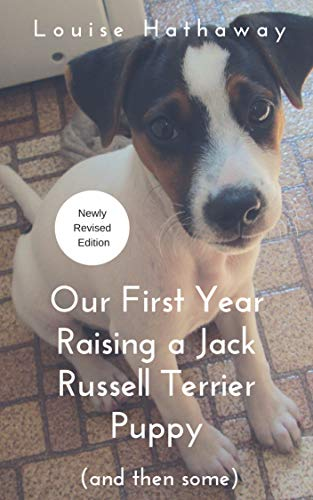 Our First Year Raising a Jack Russell Terrier Puppy, used for sale  Delivered anywhere in Canada