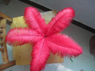 FidgetGear 卸売10-100個の美しいダチョウの羽30-35 cm / 12-14インチ 赤   B07SDLRKGW