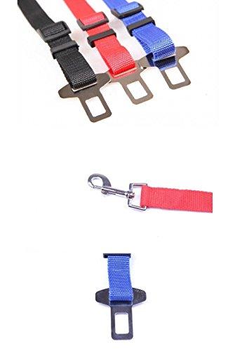 Adjustable Automotive Safety Vehicle Seatbelt