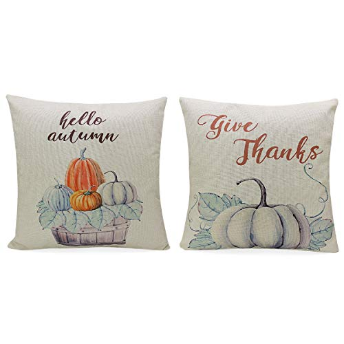 Beatiful set of 2 Thanksgiving pillow