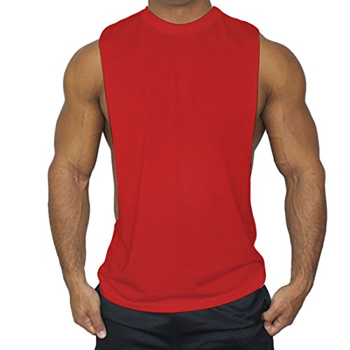 ALAPUSA New Muscle Cut Workout T-Shirt Bodybuilding Tank Top (US,XL/Asia,2XL) (Aynsley Henley)