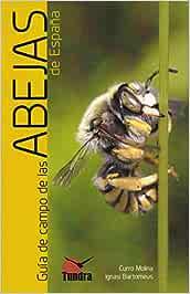 Guía de campo de las abejas de España: Amazon.es: Curro Molina, Curro Molina: Libros