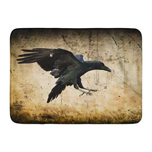 colory Doormats Bath Rugs Mat Landing Black Raven