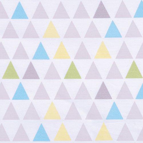 Triangle lab _image1