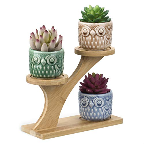 3pcs Owl Succulent Pots with 3 Tier Bamboo Saucers Stand Holder - Colours Modern Decorative Ceramic Flower Planter Plant Pot with Drainage - Home Office Desk Garden Mini Cactus Pot Indoor Decoration