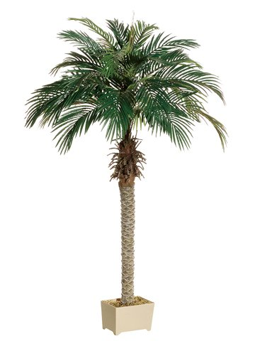 Silk Christmas Tree - 6' Phoenix Palm Tree in Rectangular Plastic Pot (Pack of 2)