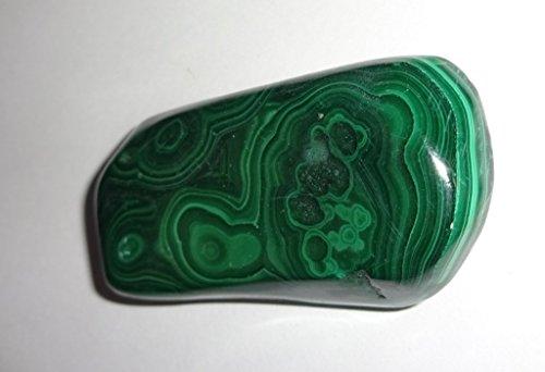 1pc #12 Malachite X-large Premium Quality Polished Crystal Healing Tumbled Gemstone Stone