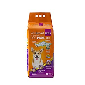 WizSmart All Day Dry Premium Dog and Puppy Training Pads, Made with Recycled Unused Baby Diapers and Eco Friendly Materials, 10 Cup Ultra 30 countt