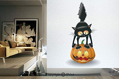 Ylljy00 Decorative Privacy Window Film/Black Cat on Pumpkin Spooky Cartoon Characters Halloween Humor Art/No-Glue Self Static Cling for Home Bedroom Bathroom Kitchen Office Decor Orange -
