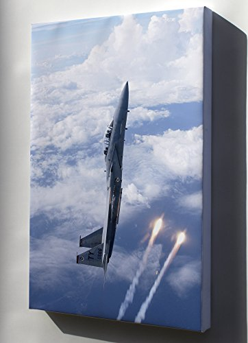 Canvas 16x24; F-15D Eagle From The 325Th Fighter - F-15d Eagle