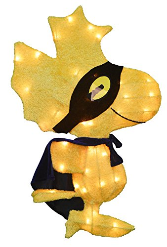 ProductWorks 24-Inch Pre-Lit Spooky Masked Woodstock Yard Decoration for $<!--$29.65-->