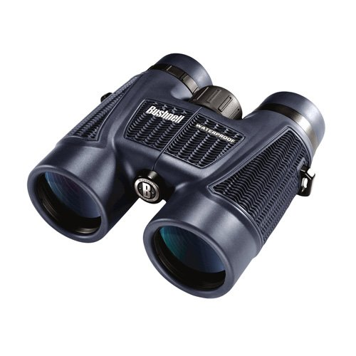 Bushnell H2O Waterproof/Fogproof Roof Prism Binocular, 8x42 (158042) with Harness and Glass Care Kit