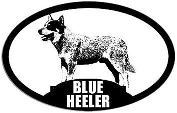 V01 Australian Cattle Dog Board Decal Sign Blue Heeler Car Window Sticker