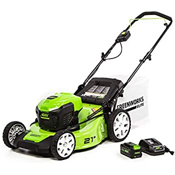 Amazon com : Greenworks 20-Inch 40V Twin Force Cordless Lawn Mower