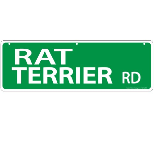 Imagine This Rat Terrier Street Sign