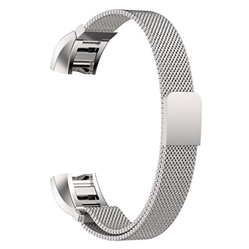 Replacement Stainless Magnetic Milanese wristband