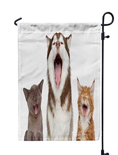 Shorping Welcome Garden Flag, 12x18Inch Group Pets Sing Song Theme Cats Dogs Portrait White Background for Holiday and Seasonal Double-Sided Printing Yards Flags -