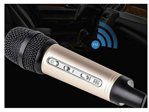 Mini car Microphone FM Wireless Bluetooth Cell Phone Sing it K Full Microphone Shen Mai Compatible Mobile Computer,Gold ()