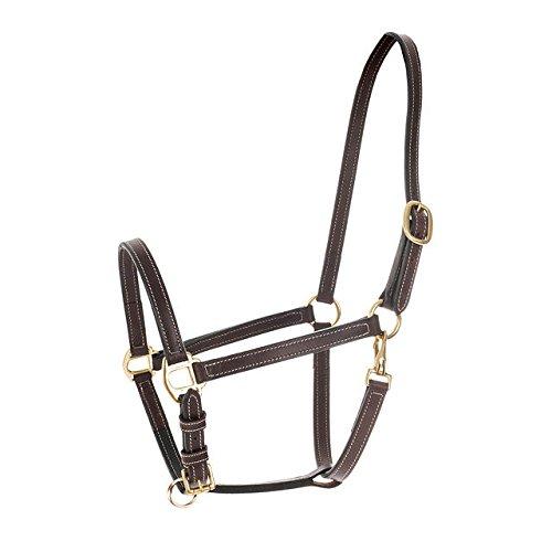 - HORZE Fremont Leather Halter - Brown - Pony
