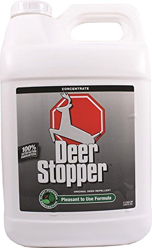 (Messina Wildlife DS-C-320, 2.5 Gallon MESSINAS 073111 Stopper Original Deer Repellent Concentrate, 2.5 )
