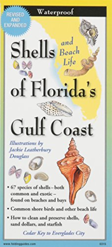 - Shells of Florida's Gulf Coast: Folding Guide (Foldingguides)