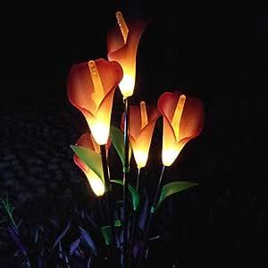 LTY-LED Solar Powered Lawn Light Garden Light Decorative Light Flower Light(Leh-28031)(TYN) , Red